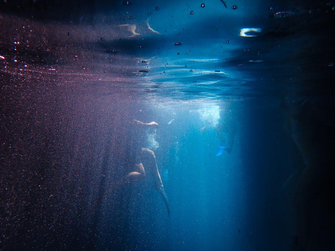 dark-diving-eerie-2289407.jpg